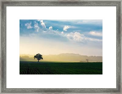 Splendid Sunrise Framed Print by Todd Klassy
