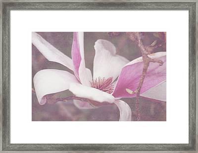 Framed Print featuring the photograph Splendid Tulip Tree  by Toni Hopper