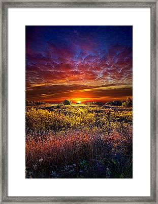 Splendiferous Framed Print by Phil Koch