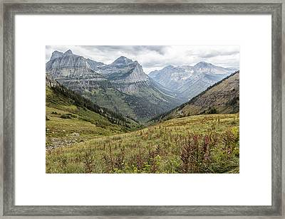 Framed Print featuring the photograph Splendor From Highline Trail - Glacier by Belinda Greb