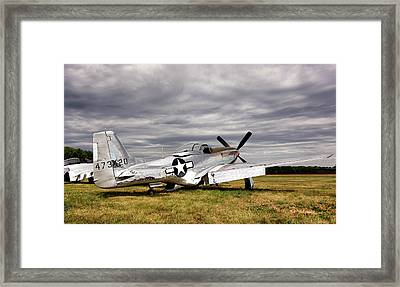 Splendor In The Grass Framed Print by Peter Chilelli