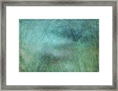 Splendor Of The Sea Framed Print by Jim Cook