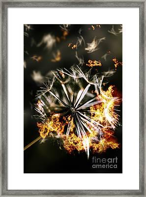 Splinters Of Finality Framed Print