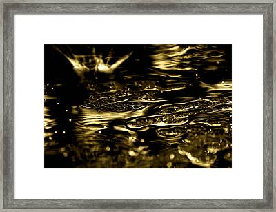 Splish Splash Framed Print