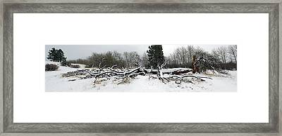 Framed Print featuring the photograph Split Personality - Panorama by Shane Bechler