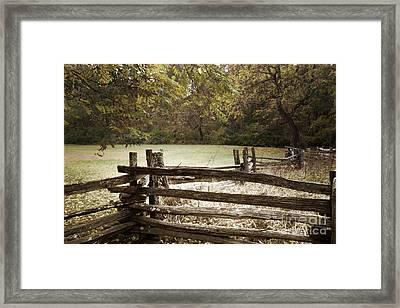 Split Rail Fence Framed Print by Tom Gari Gallery-Three-Photography