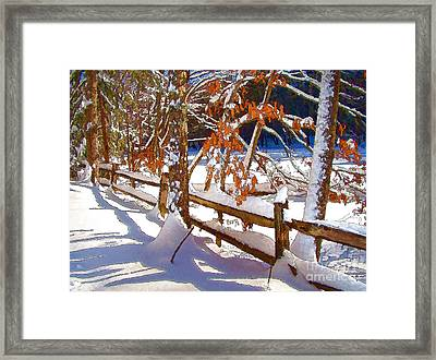 Split Rails Framed Print