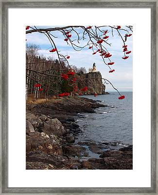 Split Rock Berries Framed Print by James Peterson