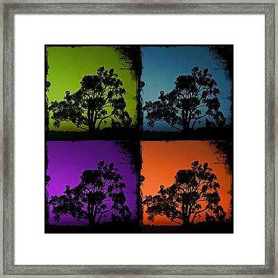 Framed Print featuring the photograph Spooky Tree- Collage 1 by KayeCee Spain