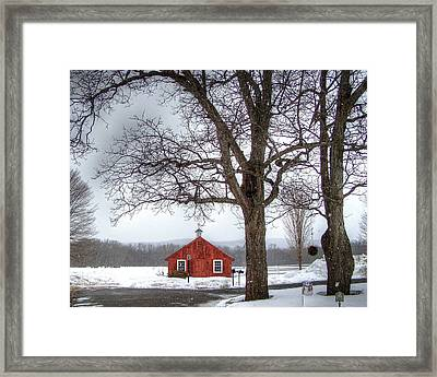 Spot Of Color Framed Print