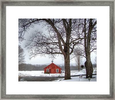 Spot Of Color Framed Print by Betsy Zimmerli