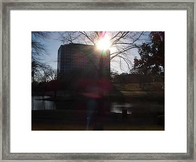 Spotlight Framed Print by A Windhauser