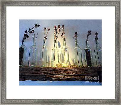 Spotlight On Blooms Dried And Bottled Framed Print