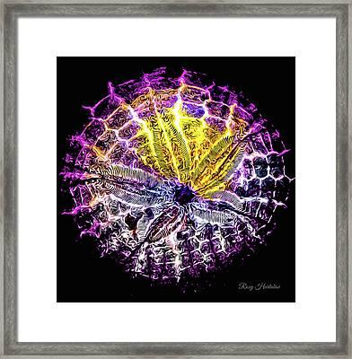 Spotlight Vibrant Framed Print
