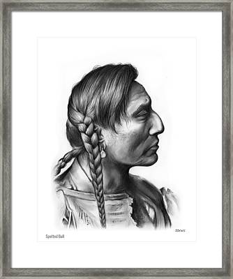 Spotted Bull Framed Print by Greg Joens