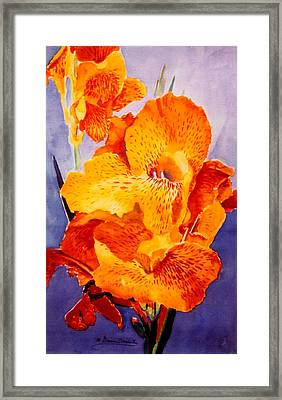 Spotted Canna Framed Print by M Diane Bonaparte