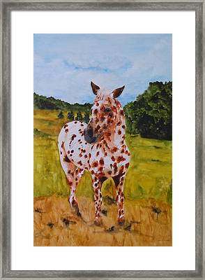 Spotted In Hawaii Framed Print by Jean Blackmer