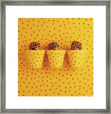 Spotted Pots Framed Print by Anne Geddes