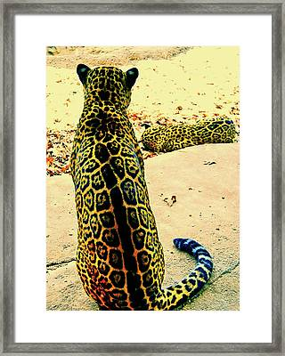 Spotted Siblings Framed Print by JAMART Photography