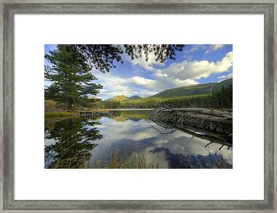 Sprague Lake 5 Framed Print