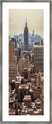 Sprawling Urban Jungle Framed Print