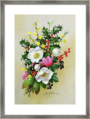 Spray Of Dogrose Holly Mistletoe And Larkspur Framed Print by Albert Williams