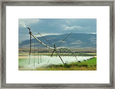 Spraying Water Framed Print by Todd Klassy