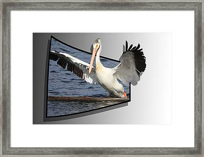 Spread Your Wings Framed Print by Shane Bechler