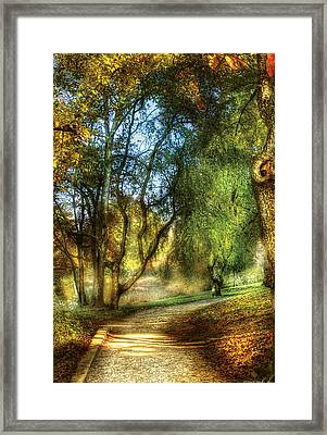 Spring - Landscape - My Journey My Path Framed Print by Mike Savad