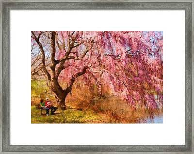 Spring - Sakura - A Beautiful Spring Day  Framed Print
