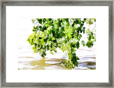 Spring 3 Framed Print by Lanjee Chee