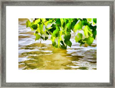 Spring 4 Framed Print by Lanjee Chee