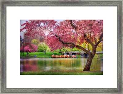 Framed Print featuring the photograph Spring Afternoon In The Boston Public Garden - Boston Swan Boats by Joann Vitali