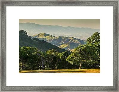 Spring Afternoon Framed Print by Marc Crumpler