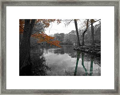 Framed Print featuring the photograph Spring Alive by Blake Yeager