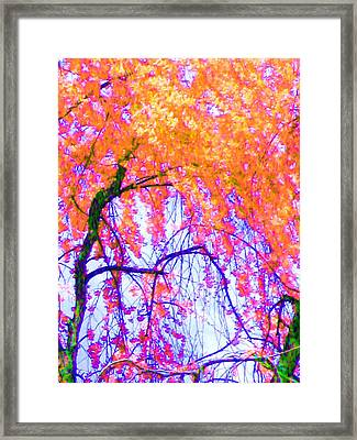 Framed Print featuring the photograph Spring Alive by Susan Carella