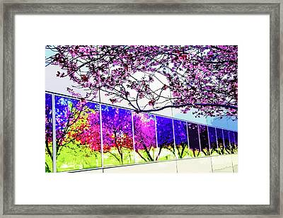 Spring Architectural Abstract Framed Print