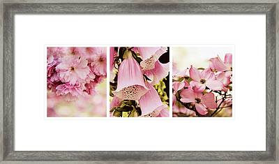 Spring Assemblage Triptych Framed Print
