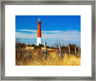 Spring At Barnegat Framed Print by Nick Zelinsky