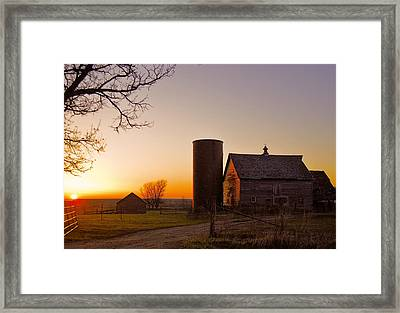 Spring At Birch Barn 2 Framed Print