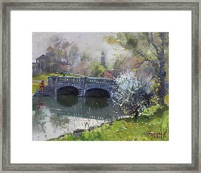Spring At Delaware Lake Buffalo Framed Print by Ylli Haruni