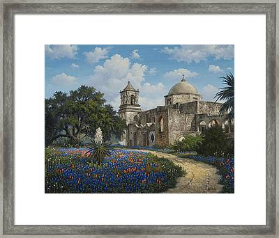 Spring At San Jose Framed Print by Kyle Wood