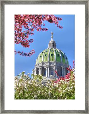 Spring At The Capitol Framed Print by Lori Deiter