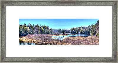 Spring Scene At The Tobie Trail Bridge Framed Print by David Patterson