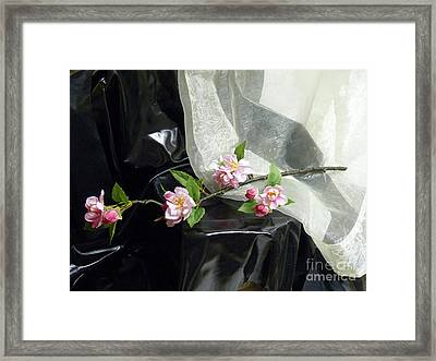 Spring Awakening With Pink Cherry Blossoms Framed Print