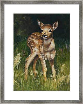 Spring Baby Fawn Framed Print