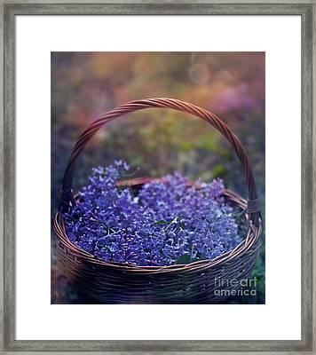 Spring Basket Framed Print by Agnieszka Mlicka