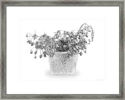 Spring Basket - Black And White Framed Print by Chrystyne Novack