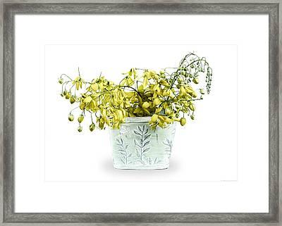 Spring Basket  Framed Print by Chrystyne Novack