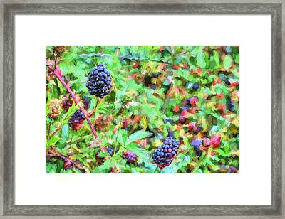 Spring Berries Framed Print